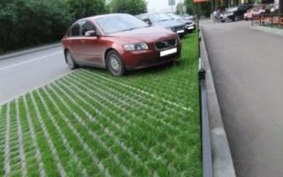 Отмена штрафа за парковку на газоне – не обойтись без профессиональной помощи