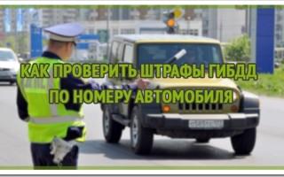 Автобот — новый сервис проверки штрафов ГИБДД